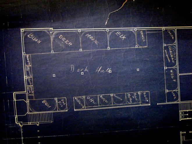 Grand Rapids Public Museum Blueprint 01