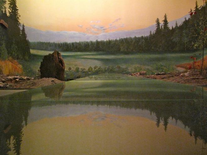 Moose Habitat 02